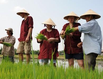 HOI AN | Farming Experience